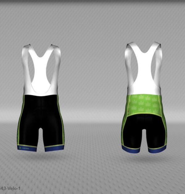 Canada 150 Shorts