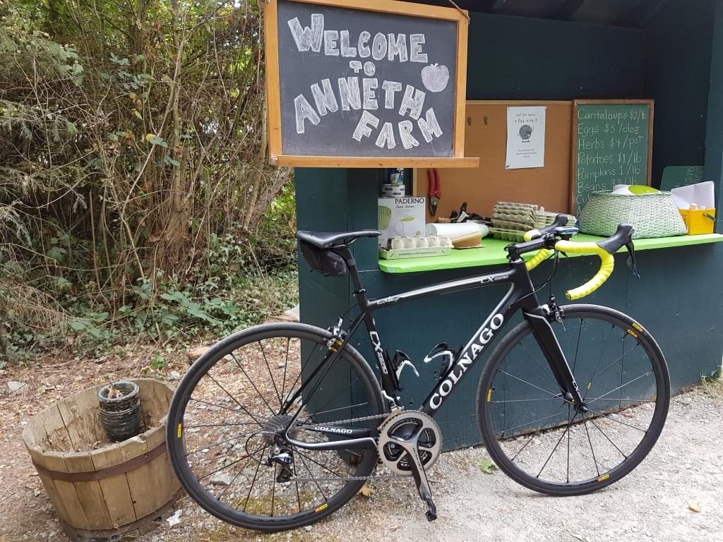 Anneth Farm Stand